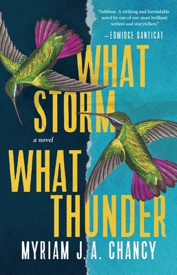 What Storm, What Thunder by Myriam J. A. Chancy